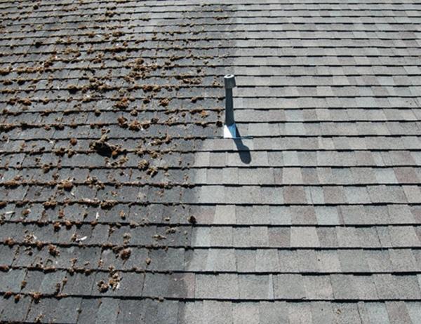 Roof Repair Maintenance Amp Cleaning Kirkwood Roofing In