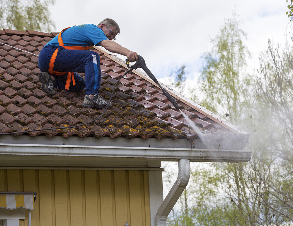 Cleaning roof by removing algae from roof